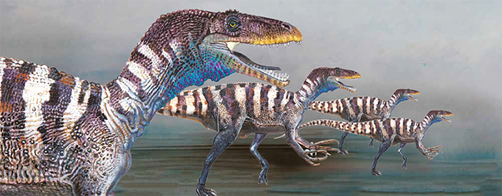 Dinosaur Discovery Lost Creatures Of The Cretaceous