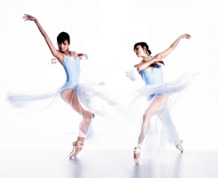Queensland Ballet - Flourish