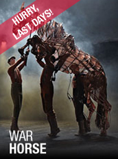 QPAC - War Horse - Lyric Theatre, QPAC, Brisbane - Tickets & Dining Packages
