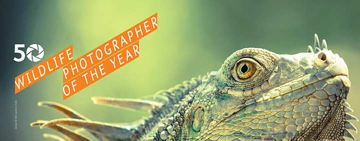 Wildlife Photographer of the Year Exhibition - Australian
