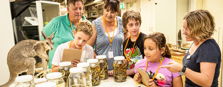 Behind The Scenes Tours - Queensland Museum, Cnr Melbourne & Grey Streets, South Bank, Brisbane - Tickets