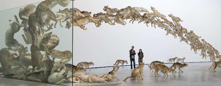 Cai Guo-Qiang: Falling Back to Earth - Gallery of Modern Art, Cultural Precinct, South Bank, Brisbane - Tickets