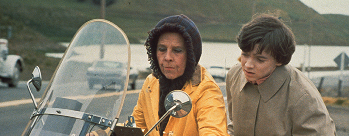 harold and maude an overview The top source for harold and maude news and tickets we do not add booking fees to exclusive offers.