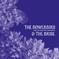The Bowerbird & The Bride